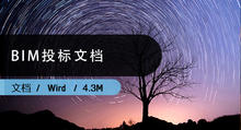 BIM招投标文档