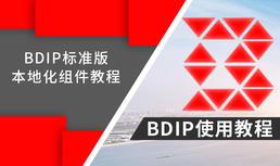 BDIP本地化组件使用教程