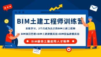 BIM土建工程师训练营(2020版)