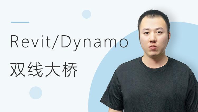 Revit+Dynamo双线大桥预应力混凝土连续梁建模