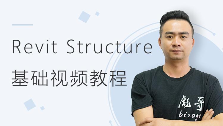 Revit Structure基础视频教程(工具篇)