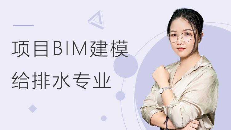 酒店项目BIM建模:给排水专业模型
