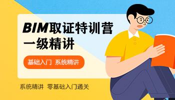 BIM等级考试一级(2021精讲班)