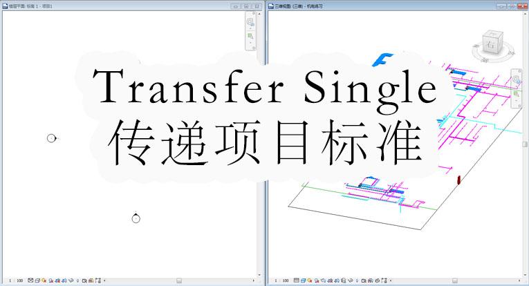 Transfer Single传递项目标准
